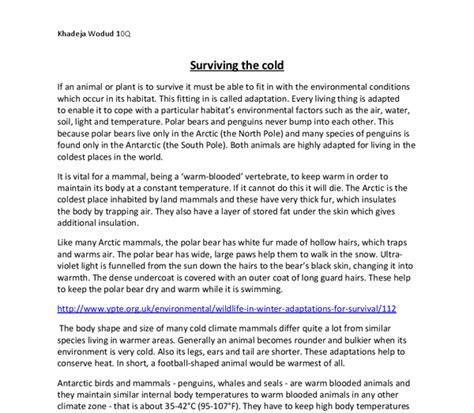 Diversity In Education Essay diversity in education essay