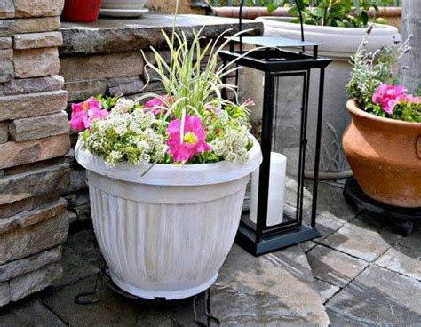 cheap containers for gardening container gardening cheap flowers and sprays on