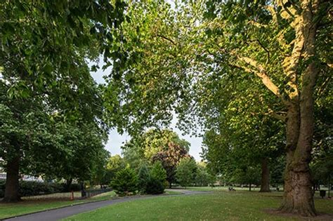 sign up now for wednesday s vauxhall park walk a story