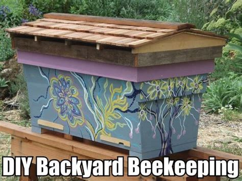 backyard beekeeping for beginners diy backyard beekeeping for beginners diy cozy home