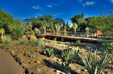 Arizona Desert Botanical Garden S 226 N Vườn đẹp Desert Botanical Gardens Arizona