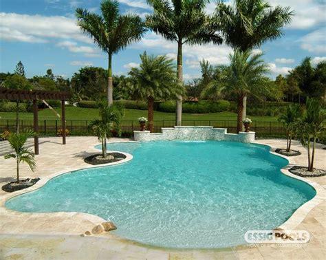 freeform pool raised spa tanning ledge paver deck