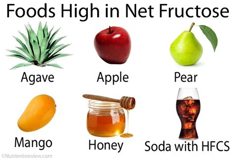 fructose s foods containing fructose recipes food