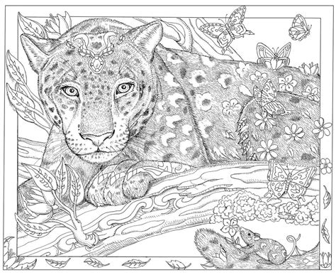 color way caldwell artist s bestselling coloring books help inspire