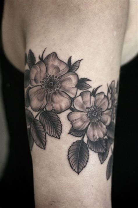 wild rose tattoos 25 best ideas about on