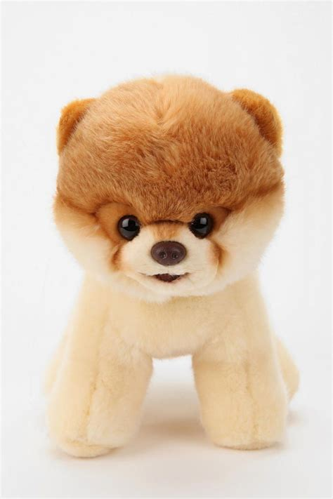 stuffed pomeranian boo plush