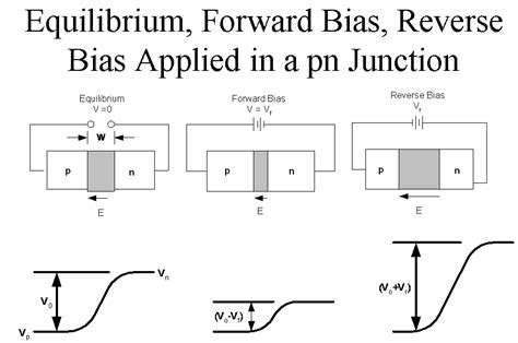 equilibrium forward bias bias applied in a pn junction