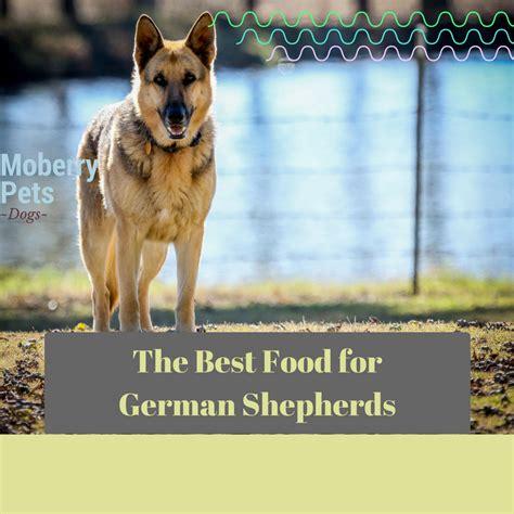 best german shepherd puppy food best food for german shepherd moberry pets