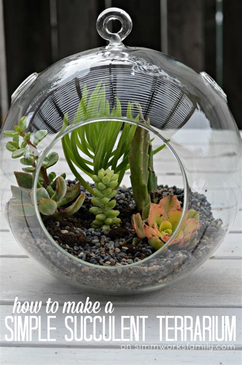 how to make a simple succulent terrarium a crafty spoonful