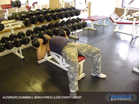 bench press how low alternate dumbbell bench press low start video exercise