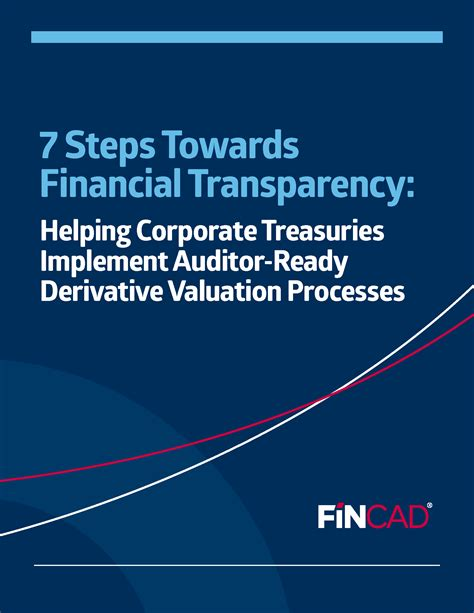The Of Company Valuation And Financial Statement Ebook E Book 7 steps towards financial transparency derivatives risk