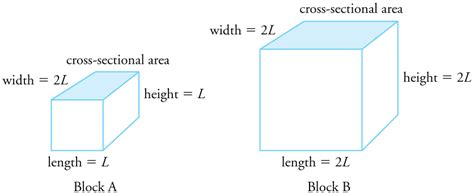 College Physics Thermal Expansion Of Solids And Liquids What Is The Length And Width Of A Bed