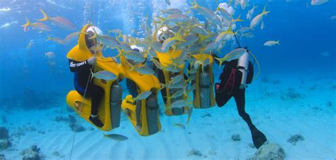 frequently asked questions about the bahamas nassau mini sub underwater adventure bahamas cruise