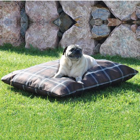 coolaroo dog bed large outdoor coolaroo dog bed with coolaroo pet bed large also