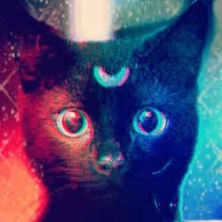 Kitten eyes hello kitty gif