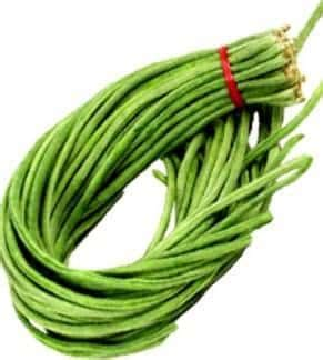 Benih Kacang Panjang Global Seed jual benih bibit kacang panjang murah lengkap bibit