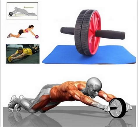 Ab Wheel Roller Exercise Alat Olah Raga Fitness fitness roller exercise wheel end 9 23 2015 1 15 am