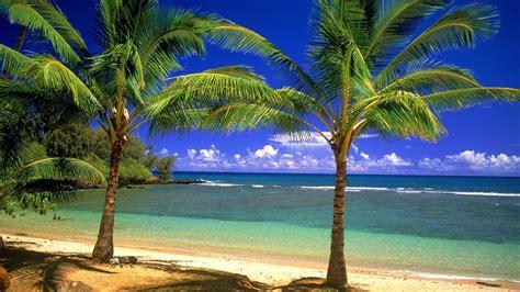 wallpaper for desktop hd beach hd beach wallpaper wallpapersafari