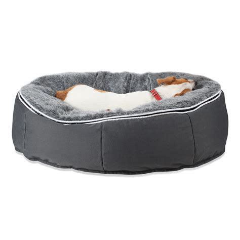 bean bag beds pet beds dog beds designer dog bean bags medium size