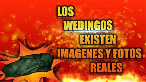 imagenes de wendigos reales 161 los wendigos existen 161 imagenes y v 237 deos reales youtube