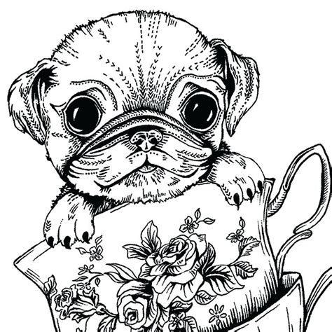 teacup puppies coloring pages teacup puppies coloring pages best of pin drawn pug step