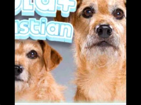 hotel for dogs cast official hotel for dogs cast