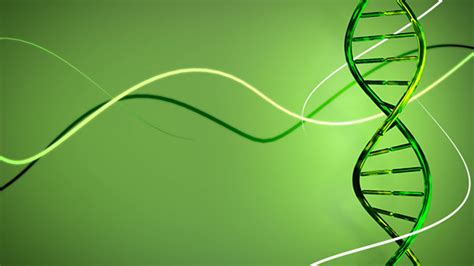 Home Design 3d Unlimited Rotating Dna In Green Background By Idlaboratory Videohive