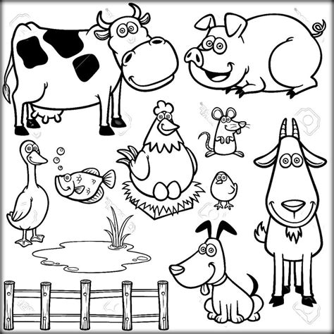 animals a hilarious coloring book for of all ages books farm animals coloring sheets color zini
