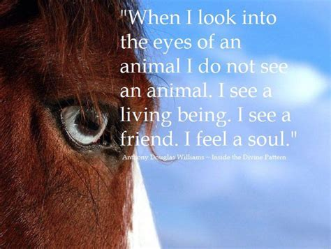 an insider s look into anthony douglas williams quote inspirational hunter