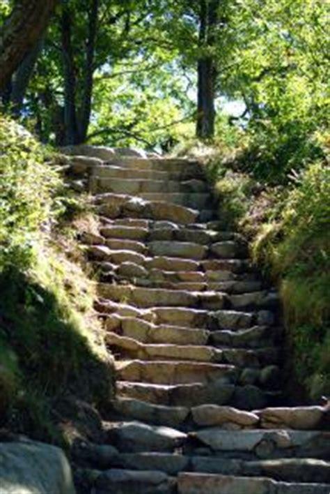 wandlen treppe natuur trap gratis foto s