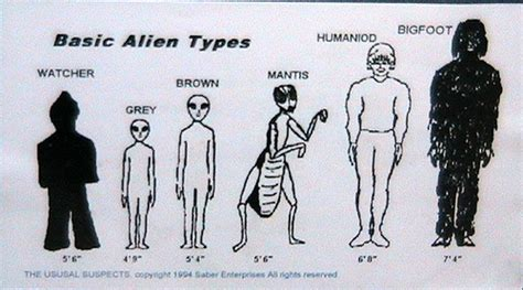 types of grays bob lazar area 51 s4 employee speaks out after 25 years