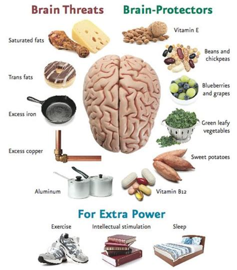 12 Nutrition Tips For Increasing Brain Power by Alzheimers Your Brain And Health On