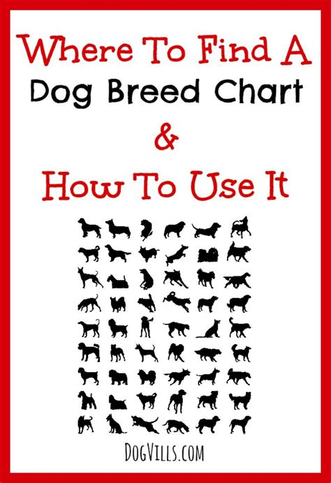 how to find a breeder where to find a breed chart how to use it vills