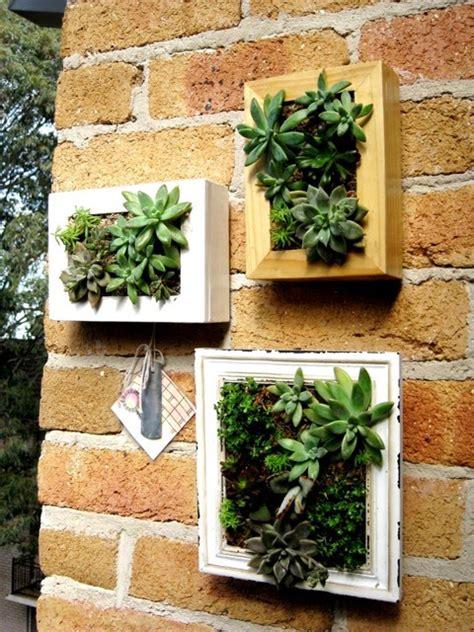 framed vertical gardens ecocentric