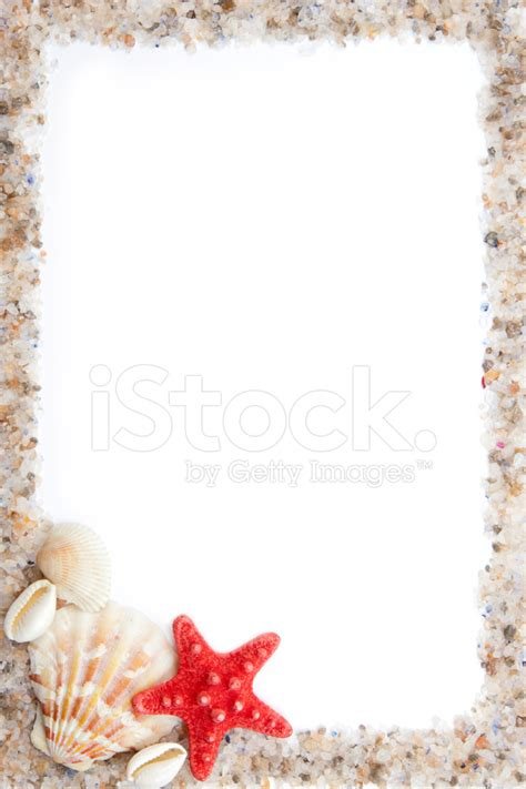 cornice con conchiglie cornice di conchiglie sale di mare e sabbia fotografie