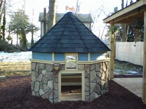 crazy dog houses 61 best images about home s for pets on pinterest over the top asian dog houses and
