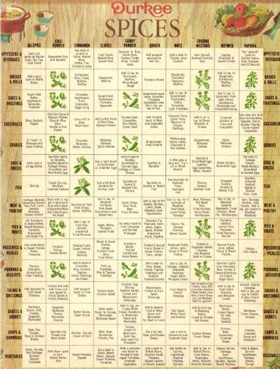 spice herb kitchen chart by amalgamarts on etsy spices herbs chart herb spice usa free hd desktop