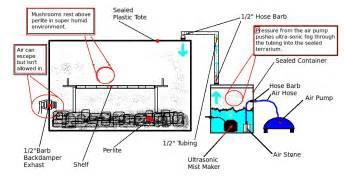 Greenhouse Blueprints build your own auto terrarium for 80 bucks or less