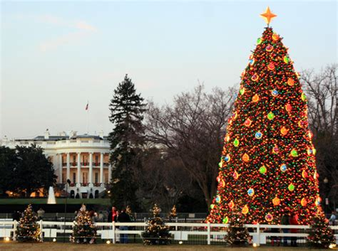 dc festival of lights tour national christmas tree tour