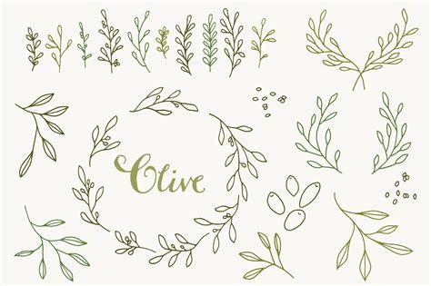 Mediterranean Style Wedding - olive branch clip art amp vectors graphics on creative market
