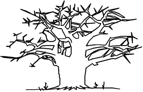 baobab tree coloring page pin baobab coloring pages on pinterest