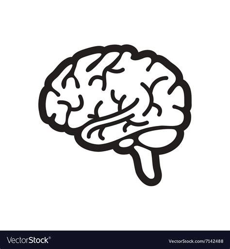 White Brain stylish black and white icon human brain vector image