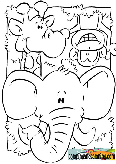 coloring pages animals jungle jungle colouring pages