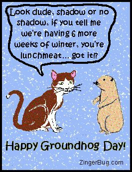 groundhog day jokes happy groundhog day cat joke glitter graphic greeting