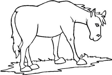 imagenes de animales y plantas para colorear animales de granja para colorear biopedia