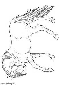 heste tegninger colouring pages