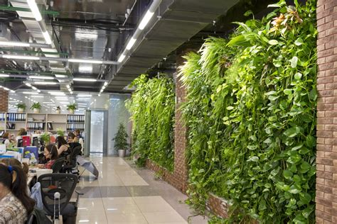almaty entrepreneur brings indoor gardening  kazakhstan