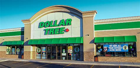 tree shop warehouse dollar tree canada finds dempsters whole grains bread