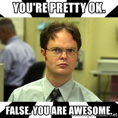 You Re Awesome Meme - you re pretty ok false you are awesome dwight from