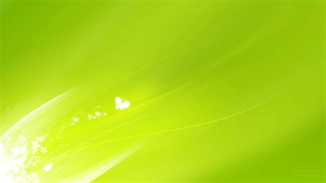 wallpaper of green 45 hd green wallpapers backgrounds for free download